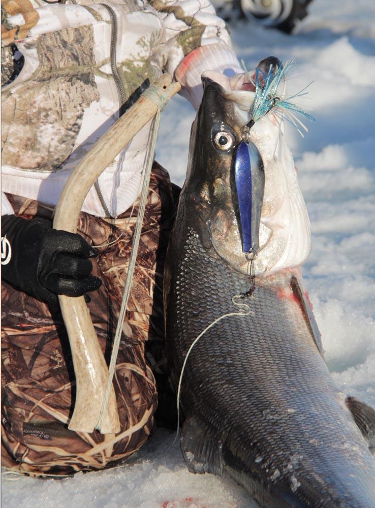 arcticicefishing005